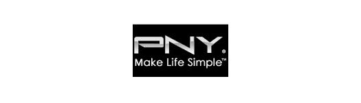Placas Gráficas PNY